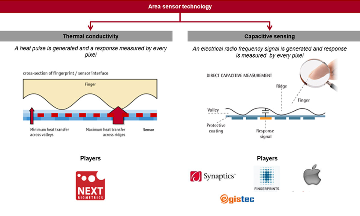 Biometriya-teplovogo-otpechatka-palza-ot-next-biometrics-1