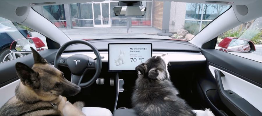 tesla-dog-mode